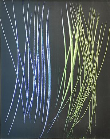 Hans Hartung 1962 Acrilico su tela 92 x 73 cm 3